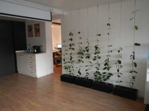 Proyecto verde oficina fork el blog de litre for Proyecto oficina